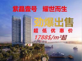 A line of river views, 80,000 / unit for sale! Excellent location, luxurious decoration!